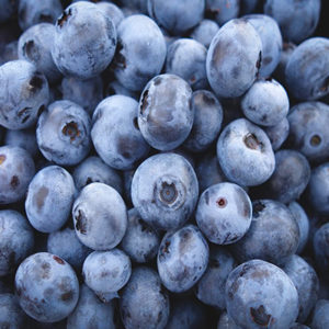 Biocontrol and Integrated Crop Management products for your blueberries crop